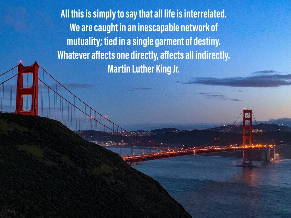 """All this is simply to say that all life is inter-related. We are caught in an inescapable network of mutuality, tied in a single garment of destiny. Whatever affects one directly, affects all indirectly."" Martin Luther King Jr."